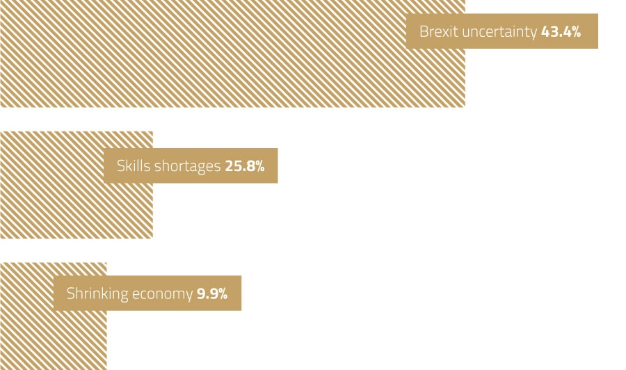 pre-brexit-concerns-inforgraphic